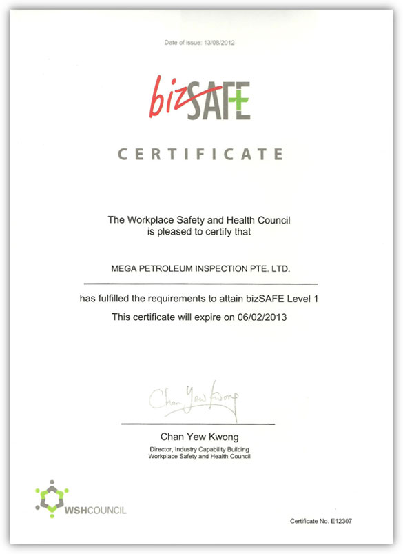 Biz Safe Certificate Level I